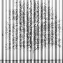 Tree rendered using line width