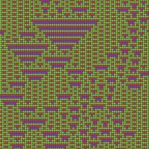 cellular automaton